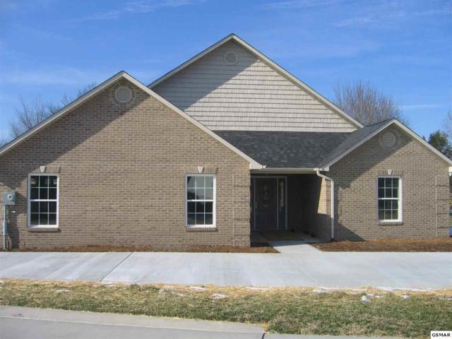 1978 Chelsea Jo Lane, Sevierville, TN 37876 (#220460) :: Colonial Real Estate
