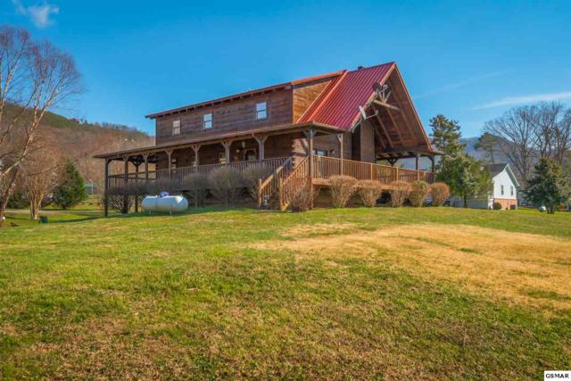 3519 Autumn Woods Ln, Sevierville, TN 37862 (#220464) :: Billy Houston Group