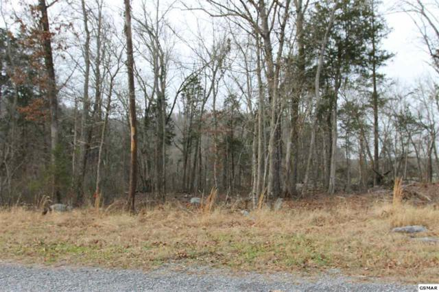 Lot 2 French Broad River Rd, Seymour, TN 37865 (#220483) :: Prime Mountain Properties