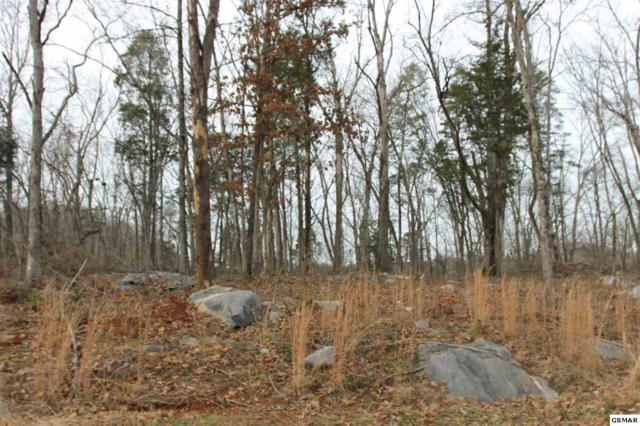 Lot 3 French Broad River Rd, Seymour, TN 37865 (#220484) :: Prime Mountain Properties