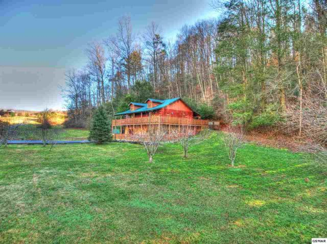 2477 Perilla Rd, Cosby, TN 37722 (#220495) :: The Terrell Team