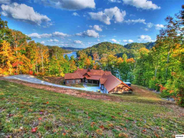 583 Norris Shores Dr, Sharps Chapel, TN 37866 (#220496) :: The Terrell Team