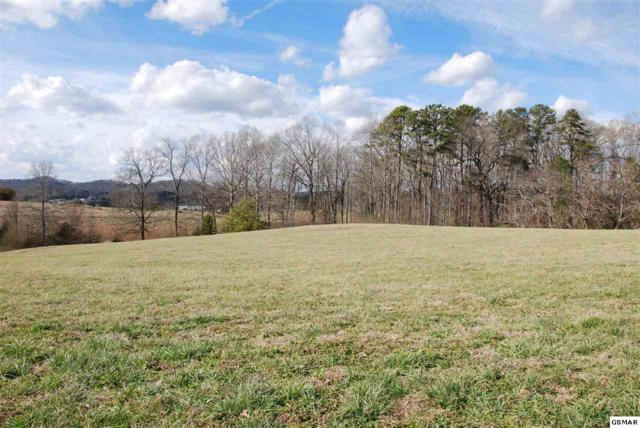 5753 Sawyers Green Trail, Seymour, TN 37865 (#220503) :: Billy Houston Group