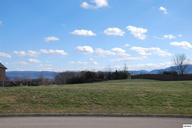 5748 Sawyers Green Trail, Seymour, TN 37865 (#220504) :: Billy Houston Group