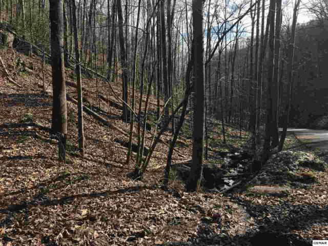 Lot Lot #34 Mountain Blvd, Sevierville, TN 37876 (#220511) :: Colonial Real Estate