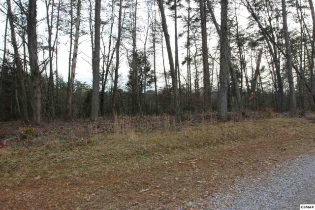Lot 4 French Broad River Rd, Seymour, TN 37865 (#220519) :: Prime Mountain Properties