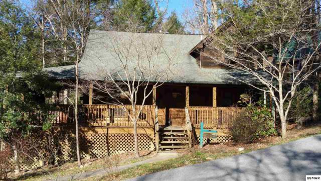 522 Hoot Owl Way, Gatlinburg, TN 37738 (#220520) :: Colonial Real Estate