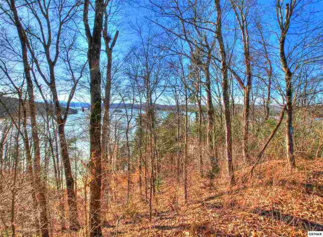 Lot 775 Russell Brothers Rd, Sharps Chapel, TN 37866 (#220523) :: Billy Houston Group