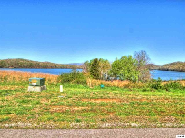 Lot 428 Pointe Vista, Rockwood, TN 37854 (#220528) :: Billy Houston Group