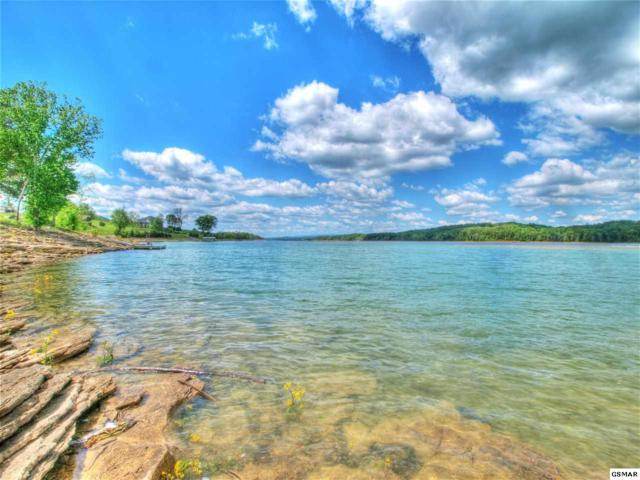 Lot 242 Leilas Way, Sharps Chapel, TN 37866 (#220531) :: Billy Houston Group