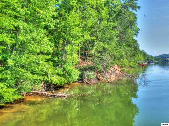 Lots 128 & 129 Thief Neck Dr, Rockwood, TN 37854 (#220536) :: Billy Houston Group