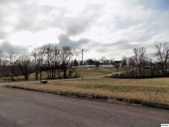 Lot #1 Stone Leigh Dr, New Market, TN 37820 (#220547) :: Billy Houston Group