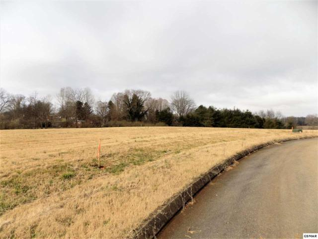 Lot #4 Stone Leigh Dr, New Market, TN 37820 (#220548) :: Billy Houston Group