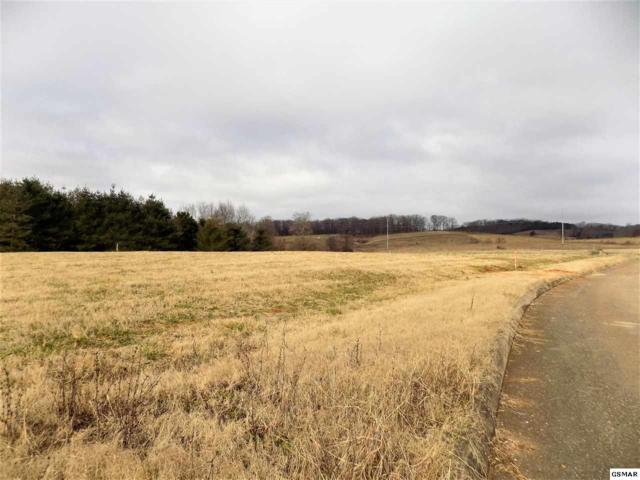Lot #5 Stone Leigh Dr, New Market, TN 37820 (#220549) :: Billy Houston Group