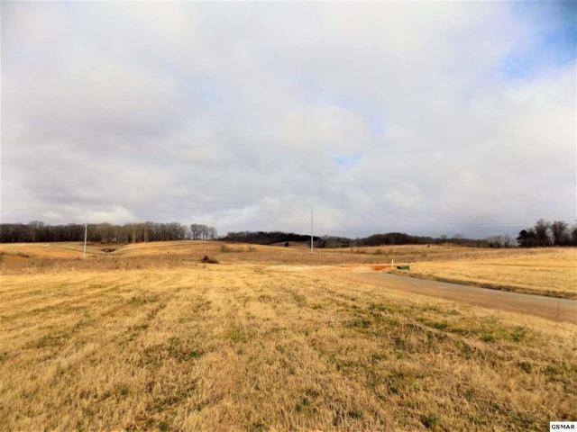 Lot #7 Stone Leigh Dr, New Market, TN 37820 (#220550) :: Billy Houston Group