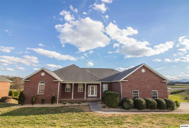 1336 Ellendale Cv, Sevierville, TN 37862 (#220557) :: Colonial Real Estate