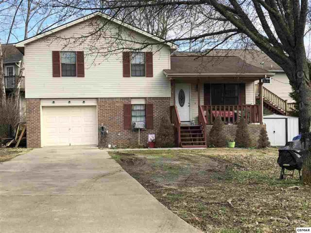 1821 Norlil Road, Sevierville, TN 37876 (#220584) :: Billy Houston Group