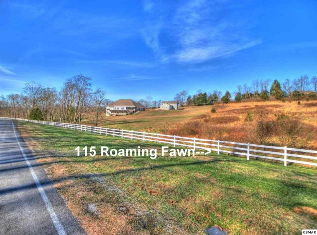 115 Roaming Fawn Dr, Rockwood, TN 37854 (#220600) :: Billy Houston Group