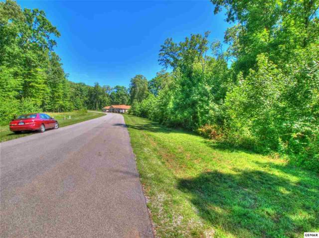 Lot 306 W Mountain Dr, Rockwood, TN 37854 (#220602) :: Billy Houston Group