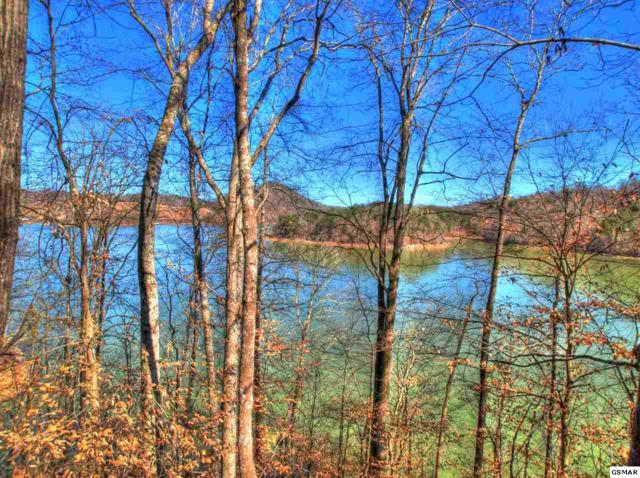 Lot 33 Mountain Shores Dr, New Tazewell, TN 37825 (#220605) :: Billy Houston Group