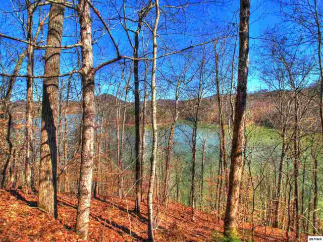 Lot 34 Mountain Shores Dr, New Tazewell, TN 37825 (#220609) :: Billy Houston Group