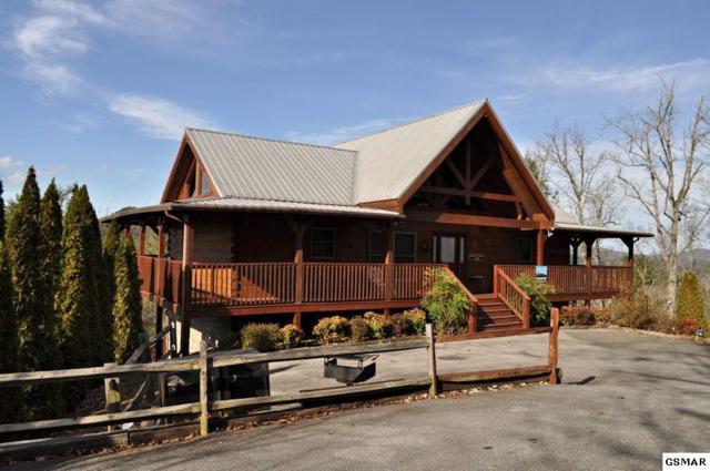 2986 Mountain Memories Way, Sevierville, TN 37876 (#220611) :: The Terrell Team