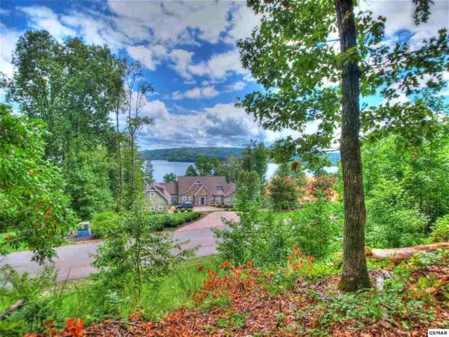 Lot 206 Reuben Ridge, Rockwood, TN 37854 (#220614) :: Billy Houston Group
