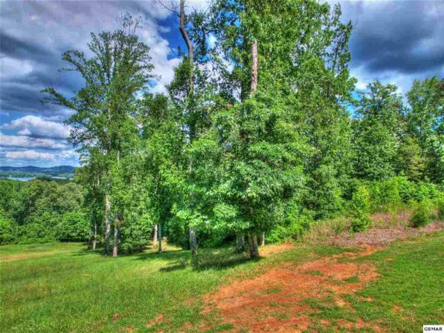 340 Eagle Ridge Dr, Rockwood, TN 37854 (#220616) :: Billy Houston Group