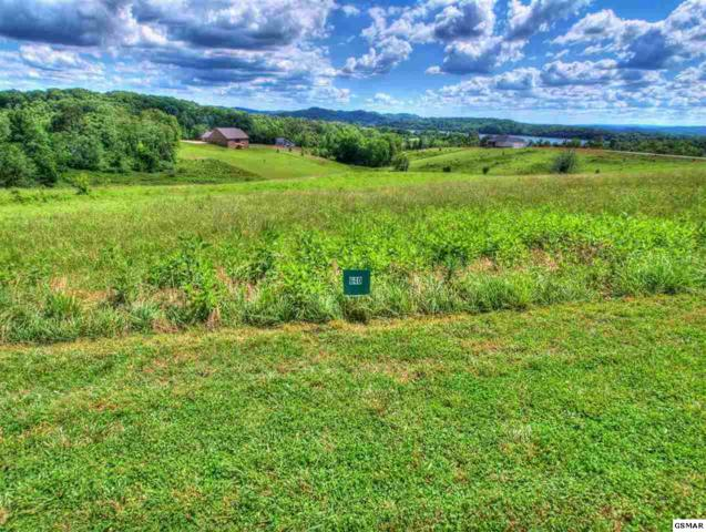 209 Majestic View Dr, Rockwood, TN 37854 (#220618) :: Billy Houston Group
