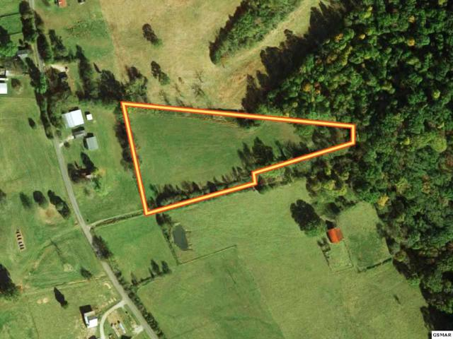 Parcel 024.00 Hickle Road, New Market, TN 37820 (#220630) :: The Terrell Team