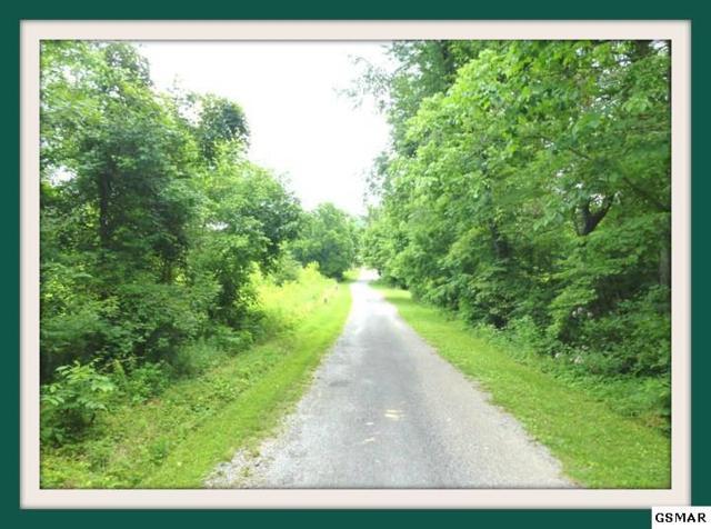 1368 Alberta Jones Rd., Dandridge, TN 37725 (#220666) :: Billy Houston Group