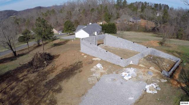 1855 Big Buck Ln, Sevierville, TN 37876 (#220667) :: Billy Houston Group