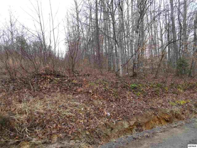 Lot 24 Trail Way, Newport, TN 37821 (#220687) :: Billy Houston Group