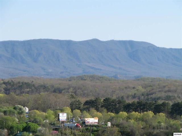 White Pine, TN 37890 :: Four Seasons Realty, Inc