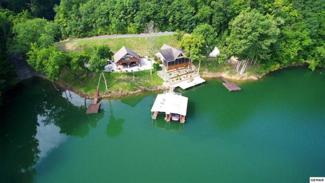 Waterfront, Sevierville, TN 37876 (#220714) :: Billy Houston Group