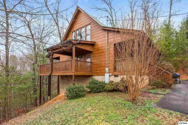 4049 Dollys Drive Mountain Music, Sevierville, TN 37876 (#220725) :: Billy Houston Group