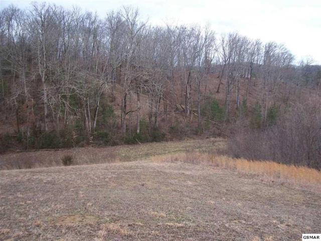 Lot 64 Sanctuary Shores Way, Sevierville, TN 37876 (#220727) :: Billy Houston Group
