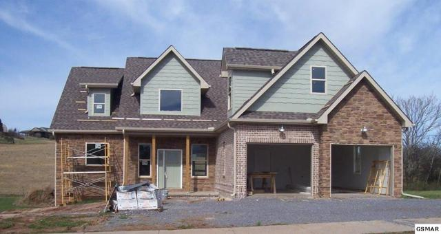 1326 Rippling Waters Circle, Sevierville, TN 37876 (#220730) :: Billy Houston Group