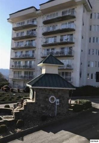 503 Dollywood Ln Unit #142, Pigeon Forge, TN 37863 (#220738) :: Colonial Real Estate