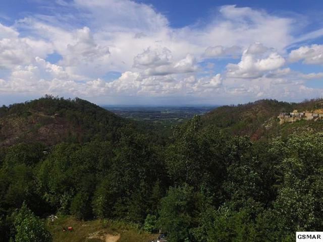 Lot 118 Mcinturf Way, Sevierville, TN 37876 (#220746) :: The Terrell Team