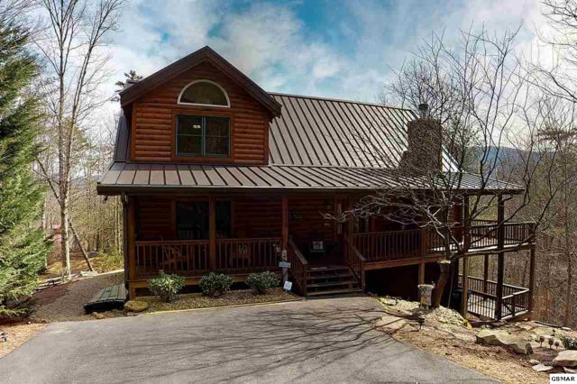 1116 Laurel Road, Townsend, TN 37882 (#220772) :: Colonial Real Estate