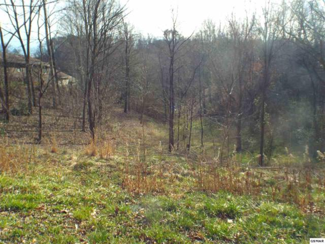Goldrush Rd, Pigeon Forge, TN  (#220842) :: The Terrell Team
