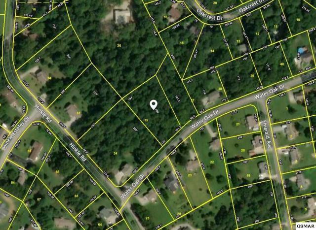 Lot 35 Water Oak Dr., Seymour, TN 37865 (#220846) :: Billy Houston Group