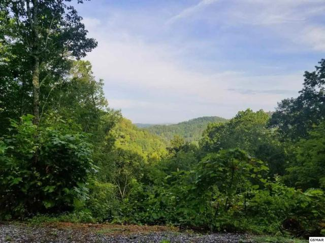Lot 32 Cupid Way, Sevierville, TN 37876 (#220849) :: Billy Houston Group