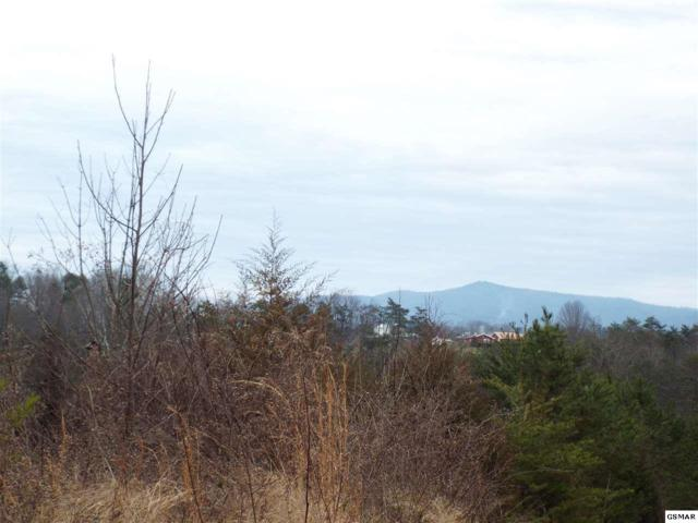 Lot 23 English Fields, Newport, TN 37821 (#220854) :: Four Seasons Realty, Inc