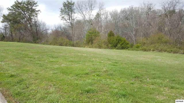 Mississippi Ave Lot 99, Seymour, TN 37865 (#220869) :: Billy Houston Group