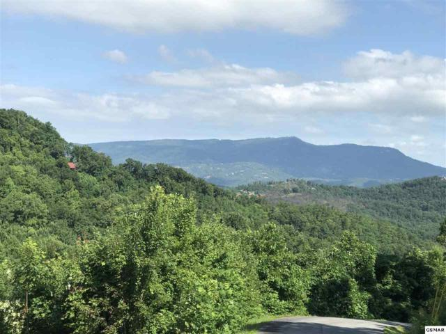Misty Shadows Drive Lot 23, Sevierville, TN 37862 (#220884) :: Colonial Real Estate
