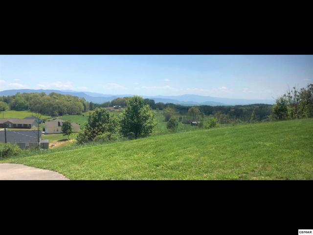 Lot 32 English Meadows Drive, White Pine, TN 37890 (#220970) :: Colonial Real Estate