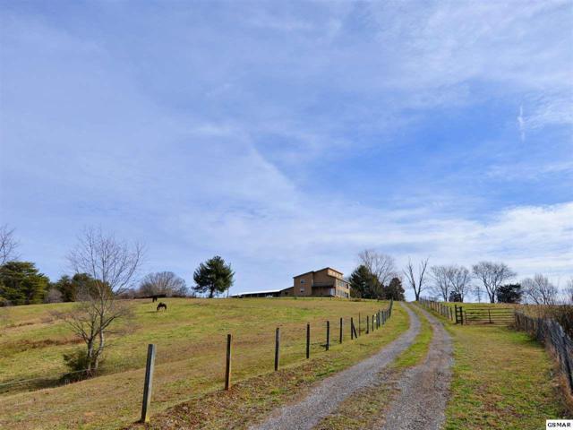 2120 Linn View Dr, Seymour, TN 37865 (#220972) :: Colonial Real Estate