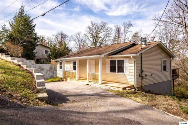124 Shady Ln, Seymour, TN 37865 (#220973) :: Colonial Real Estate